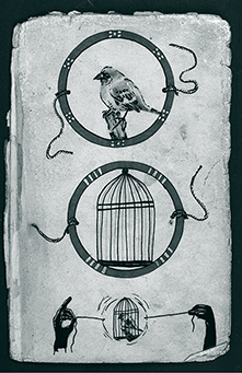 cyan 01. Ilustracion de Taumatropo