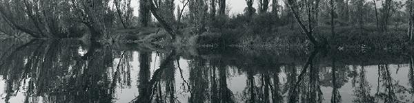 Arizpe - Canal de Ampampilco CUT