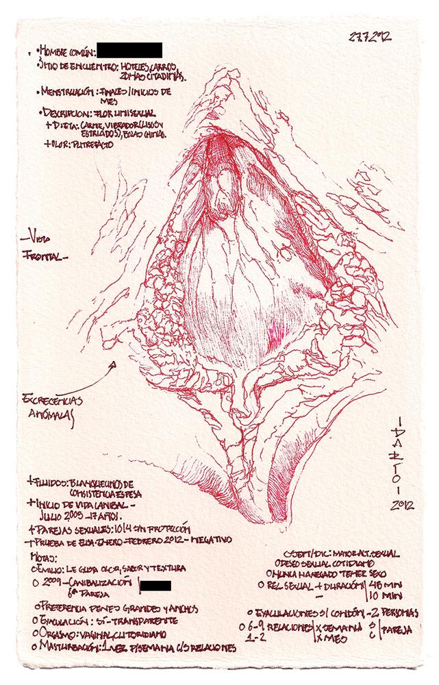 Flora de Occidente. Residuos de un viaje de exploración. Carne botánica, tinta y vellos púbicos sobre papel de algodón, 3 módulos de 21x13 cm, 2012. Col. particular.