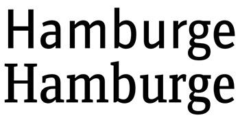 Muestra de la súper familia tipográfica Zine con variantes sans-serif y romanas que parten de una misma base.