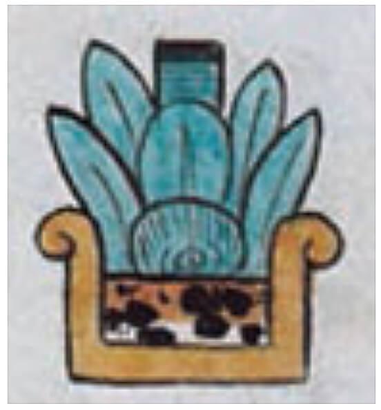 """Ácatl (Foja 12v) este elemento representa la caña de la planta de maíz, la mayor de las veces la vasija en la que se encuentra la planta es un surco con agua, en este caso la piel de jaguar representa surco de tierra. Es el alimento principal de los pueblos y culturas mesoamericanos y por tanto una representación de la vida de los seres humanos, particular de los que viven en el quinto sol denominados """"hombres de maíz""""  Imagen tomada del Códice Feyervary–Mayer."""